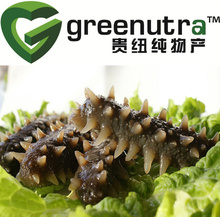 Gamat (sea cucumber) extract,sea cucumber extract