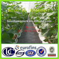 Black plastic Ground cover fabric for greenhouse,agriculture,garden