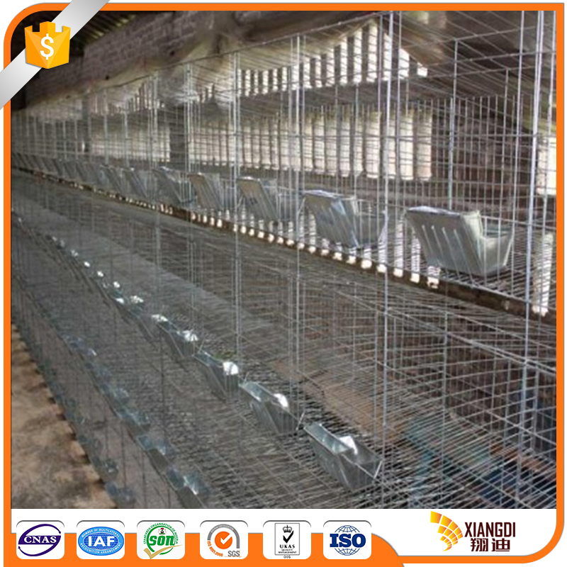 Direct Factory Price rabbit farming cage kennels