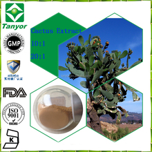Food supplements cactus fruit Extract / San pedro cactus powder for weight loss