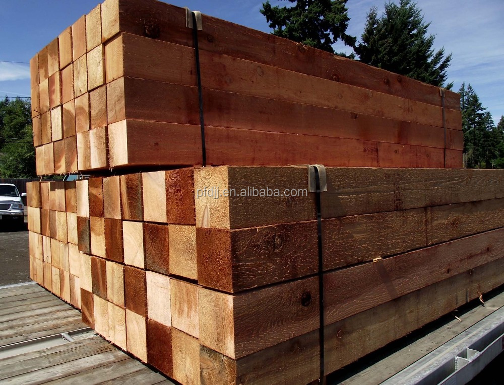 Other Timber Type wholesale price factory Abachi and Red cedar sauna wood