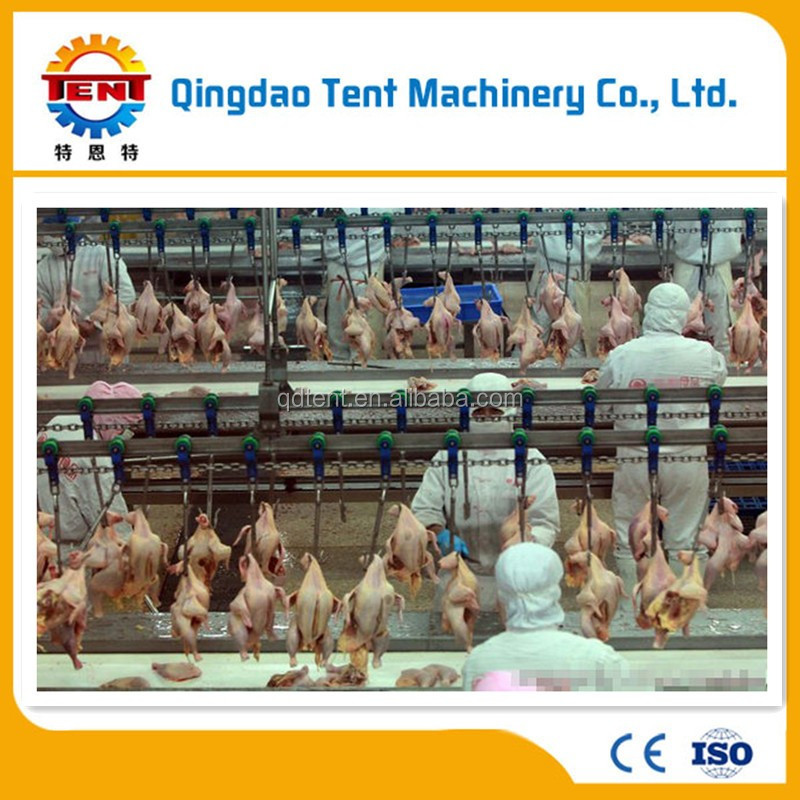 Halal 1000 chickens per hour meat processing plant