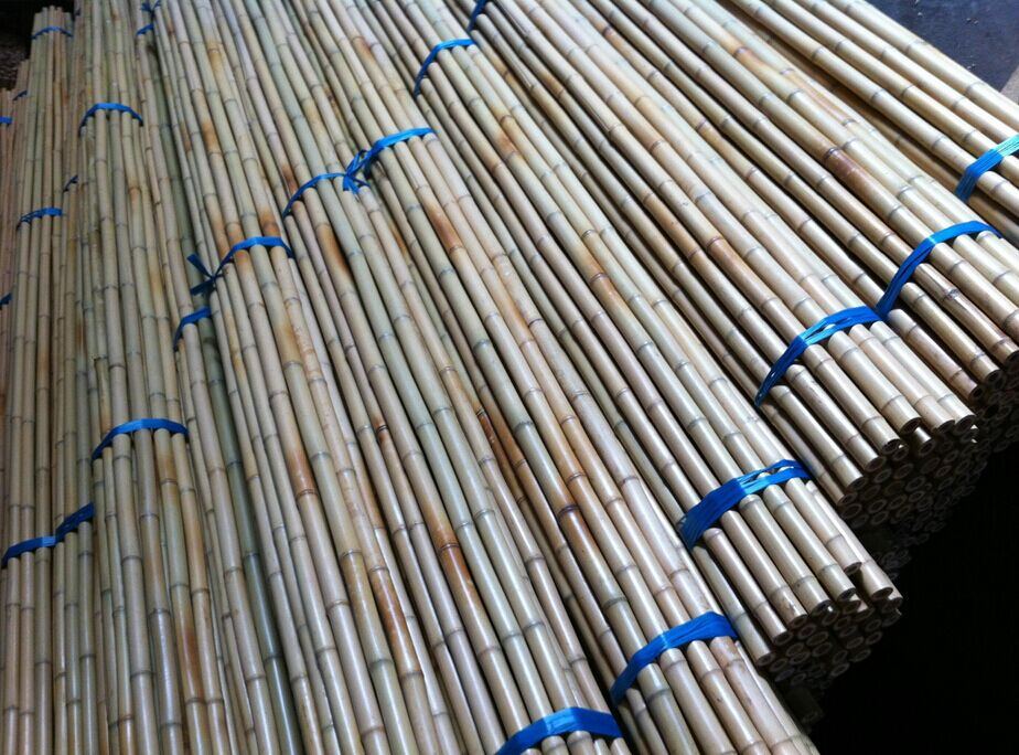 Cheap Price Good Quality Bamboo Poles,Bamboo Stakes,Bamboo Canes