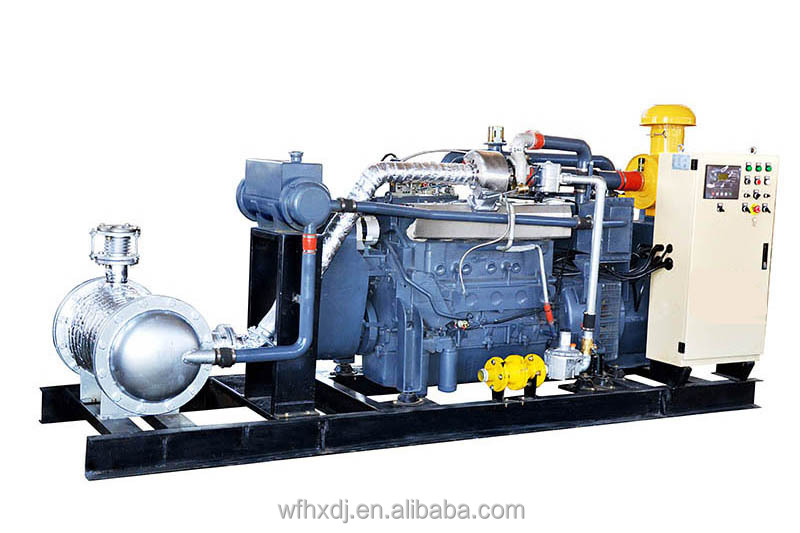 CE approved gas generator with CHP system