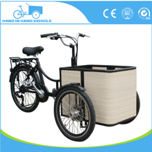 2017 Fashion Mini 14 Inch Cargo Foldable Electric Tricycle