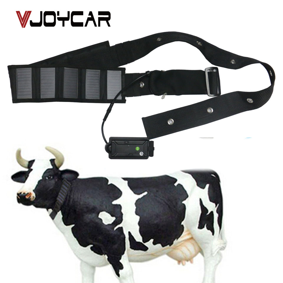 2017 New Products Long Battery Life Big Animal Collar Solar Powered GPS Tracker For Cow Horse Camel