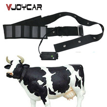 2018 New Products Long Battery Life Big Animal Collar Solar Powered GPS Tracker For Cow Horse Camel