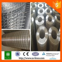 Galvanized welded wire mesh/welded wire mesh panels/stainless steel welded wire mesh