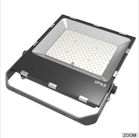 IP65 Battery 50 watt Powered outdoor 50W rechargeable led flood light