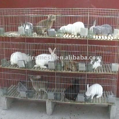 keep rabbit cage/large metal cage