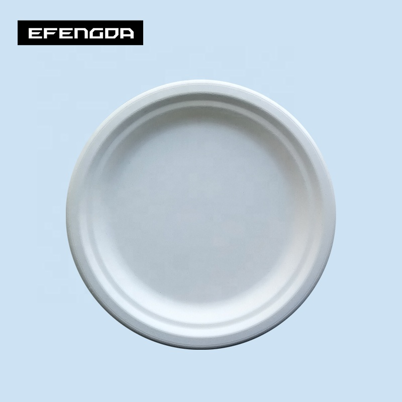 Eco-Friendly biodegradable compostable sugarcane bagasse 7inch food plate