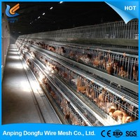 hiway china supplier cheap chicken cage plans