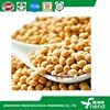 Non GMO Soy Protein For Food