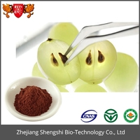 Factory directly supply plants seeds extract grape seed extract powder