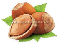organic and natural Hazelnuts