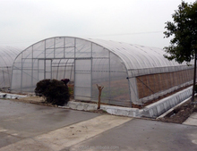 Galvanized steel pipe frame used greenhouse equipment for sale