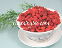 China Ningxia Organic Goji Berry