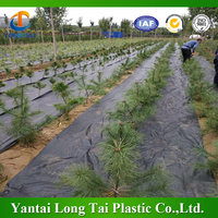 weed barrier cloth,ground covering woven fabric,agricultural plant anti grass root weed mat