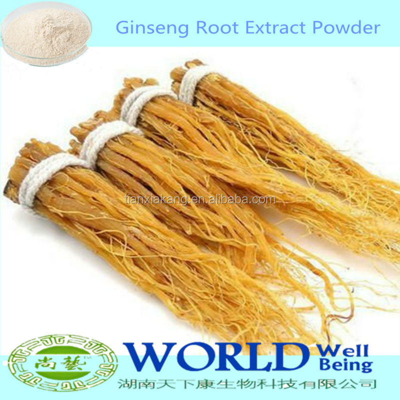 100% Natural Panax Ginseng Extract 4%-80%Ginsenosides Powder Ginseng Root Extract Low Price Free Sample Ginseng Extract Powder