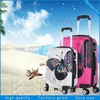 2015 new OEM ABS/PC luggage set/ trolley luggage bag