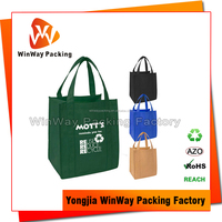Customized Logo Printing Non Woven Shopper Bag