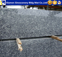 Well processed Ice flower blue granite tile for wall cladding
