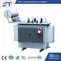 3 Phase Electrical Equipment New Type Oil Immersed Type 13.8Kv Transformer
