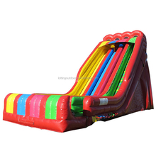 New item Inflatable Water Slide inflatable water slide clearance