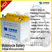 Cargo Tricycle batteries, 6-MQA-28,12V28Ah, Shinery original batteries
