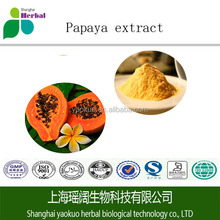 Fruit extract powder 100% Organic Papaya Powder Papaya Seed