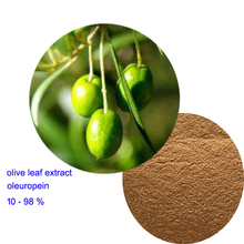 High quality olive leaf extract oleuropein 40%