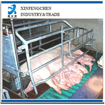 Farrowing crate design cage