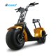 Snow Small Scotter Stand Up Adult Electric Scooter