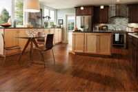 PG901German Technology Wood Laminate Flooring