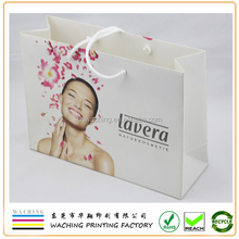 2015 Best Seller Design Shopping Paper bag
