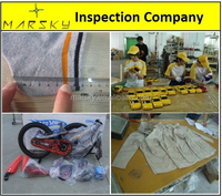 China Inspection Services / Duck, Goose & Mummy Down Sleeping Bag / Camping / Initial Production Check / Professional QC