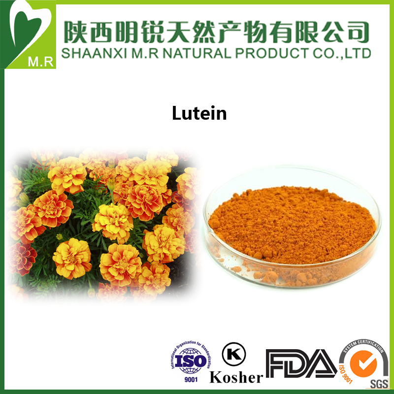 eye vitamins lutein ester manufacturer