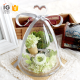 Mini Glass Dome Bell Jar, Wholesale Glass Dome , Glass Display Dome Cloche