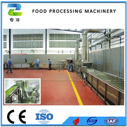 Food Dehydration Machine Factory Price Continuous Vegetables Drying Line Equipment