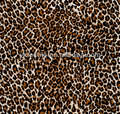 polyester leopard print taffeta fabric for many use