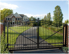 Competitive price Arched Gates metal gate/ Luxury Stainless Steel Gate Design with Leave Steel Decorating
