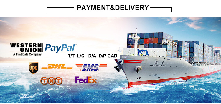 14Payment and Delivery.jpg