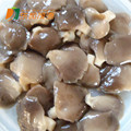 raw oysters images salt water oysters plastic bottle for the mushroom cultivation