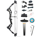 M131 compound bow and arrow set