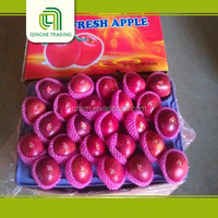Fruit fresh, Huaniu apple for export