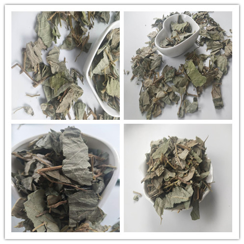 Jin Qian Cao Chinese Traditional Crude Herbs High Quality Best Price Spot Supply Natural Christina Loosestrife