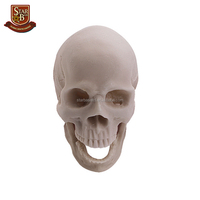Factory custom made resin skull head figure art minds resin crafts