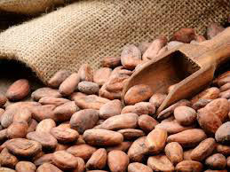 High Grade Dried Cameroon Raw Cocoa Beans