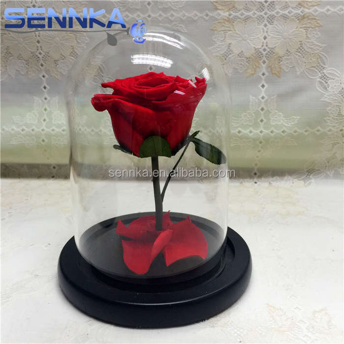 Everlasting wholesale preserved roses Never Withered eternal roses flowers
