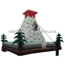 2012 Hot Sale Inflatable Rock Climbing Equipment for promotion